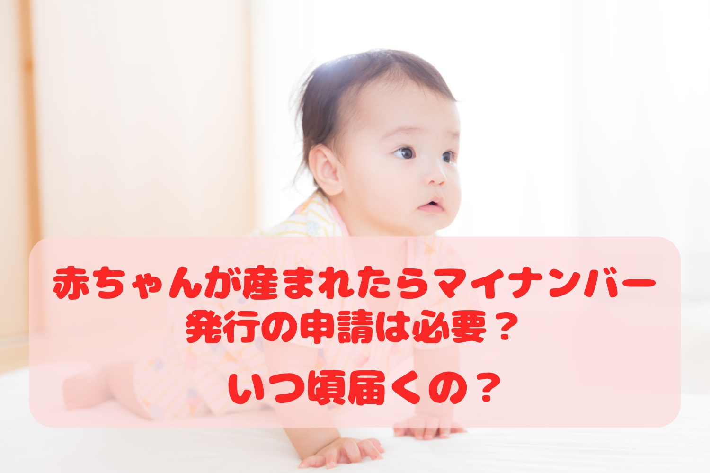 新生児 マイ ナンバー 写真