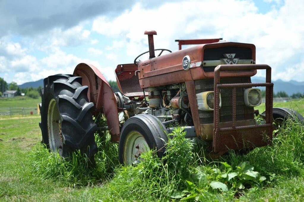【まとめ】少しでも興味が湧いたら、貸し農園に挑戦してみよう!